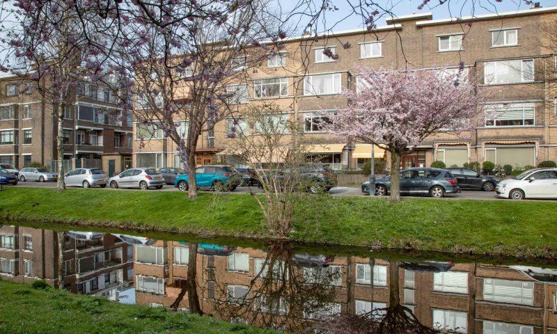 Bekijk foto 2 van Hoefbladlaan 53